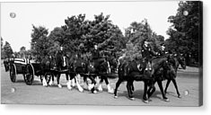 The Old Guard Caisson  Acrylic Print