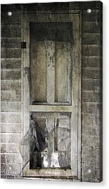 The Old Lowman Door Acrylic Print by Brian Wallace