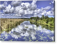 The Old Rice Fields Acrylic Print