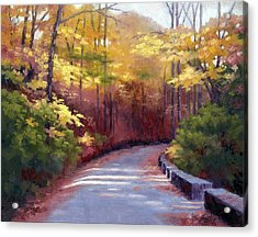 The Old Roadway In Autumn II Acrylic Print by Janet King