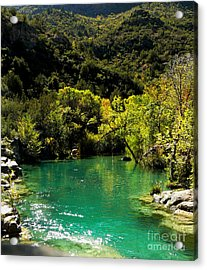 Acrylic Print featuring the photograph The Old Swimmin' Hole by Lin Haring