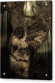 The Old Treant Acrylic Print