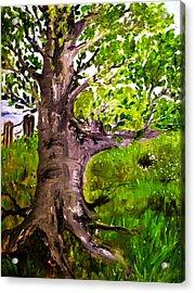 The Old Walnut Acrylic Print by Evelina Popilian