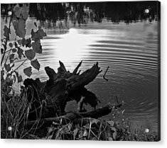 Acrylic Print featuring the photograph The Ole Fishing Hole by Ellen Tully