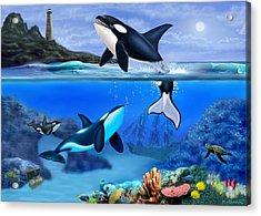 The Orca Family Acrylic Print
