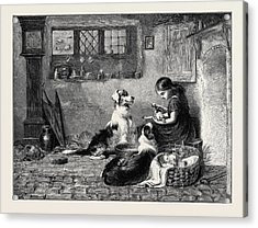 The Orphans, A Drawing In The Dudley Gallery Acrylic Print