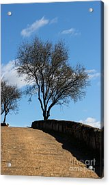 The Other Side Of The Wall Acrylic Print