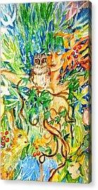 The Owl Whisperer Acrylic Print