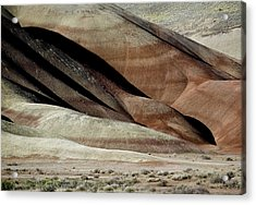 The Painted Hills 3 Acrylic Print