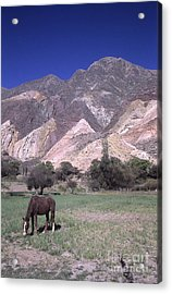 The Painters Palette Jujuy Argentina Acrylic Print by James Brunker