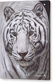 The Pale Hunter Acrylic Print