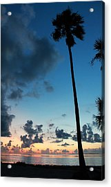 The Palm Majestic Sunset Beach Tarpon Springs Florida Acrylic Print