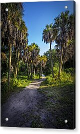 The Palm Trail Acrylic Print by Marvin Spates