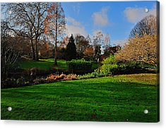 The Park And The Autumn Sun Acrylic Print