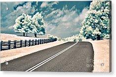 The Parkway II Acrylic Print by Dan Carmichael
