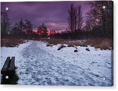 The Path By Dusk Acrylic Print