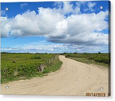 Acrylic Print featuring the painting The Path by Cindy Plutnicki