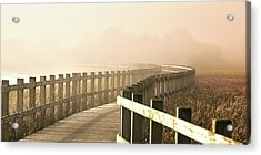 The Path Gets Brighter. Acrylic Print
