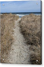 The Path Acrylic Print