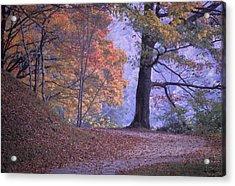 The Path Acrylic Print