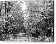 The Path Less Traveled Black And White Acrylic Print by Brett Pelletier