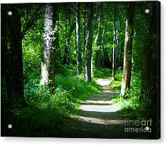 The Path Acrylic Print by Lorraine Heath