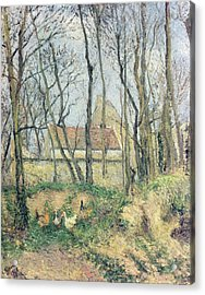 The Path Of The Wretched Acrylic Print by Camille Pissarro