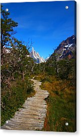 The Path To Mountains Acrylic Print by FireFlux Studios