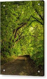 The Path To Wildcat Park Acrylic Print