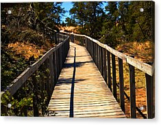 The Path Acrylic Print by Valarie Davis