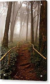 The Pathway Acrylic Print