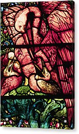 The Pelicans In Stained Glass Acrylic Print