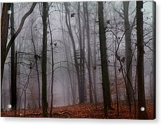 The Phantom Rises Acrylic Print by Betsy Knapp