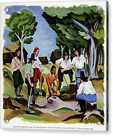 The Pilgrims Learning To Farm Acrylic Print by Cci Archives