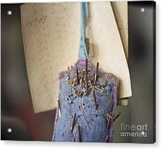 The Pincushion Acrylic Print