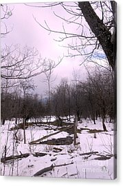 The Pink Winter Light On The Mountain Top Acrylic Print by Patricia Keller