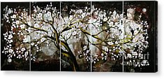 The Plum Blossom 001 Acrylic Print by Willson Lau