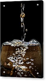 The Plunge Acrylic Print by PhotoWorks By Don Hoekwater