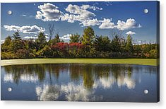The Pond In Autumn Acrylic Print