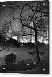 The Pond In Central Park Acrylic Print