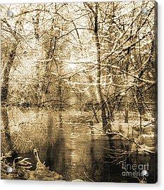 The Pond Acrylic Print