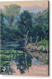 The Pond's Edge Acrylic Print by Gregory Arnett