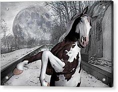 The Pony Express Acrylic Print by Betsy Knapp
