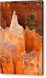 The Pope Sunrise Point Bryce Canyon National Park Acrylic Print