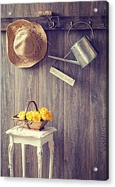The Potting Shed Acrylic Print by Amanda Elwell