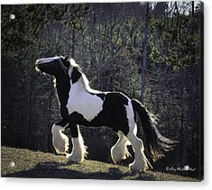 The Prancing Stallion Acrylic Print