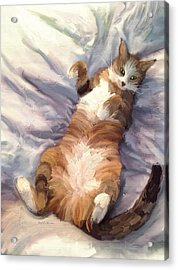 The Princess - The Cat Acrylic Print by Angela A Stanton