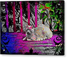 The Psychedelic Cat Acrylic Print by Absinthe Art By Michelle LeAnn Scott