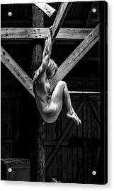 Acrylic Print featuring the photograph The Rafter Ornament by Mez