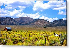 Acrylic Print featuring the photograph The Ranch by Marilyn Diaz